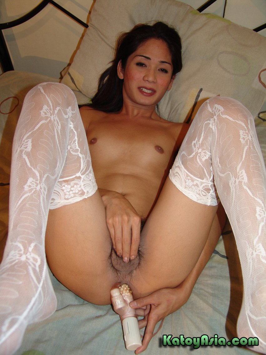 A very passable Asian ladyboy shemale
